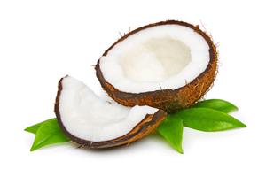 getrocknete-kokosnuss